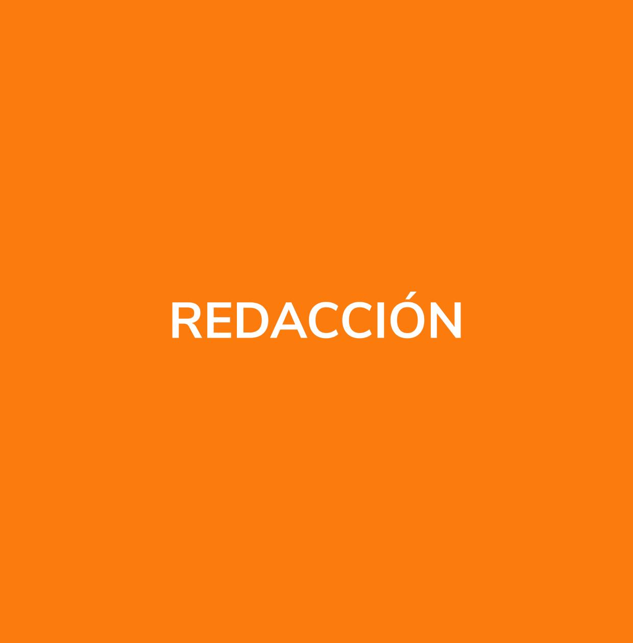Redacción - qué incluye web